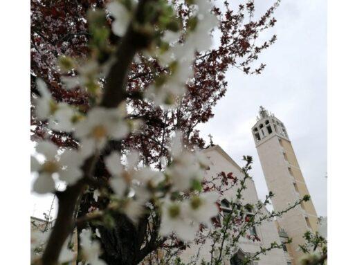 04 Aprile 2021: Domenica di Pasqua (Anno B)